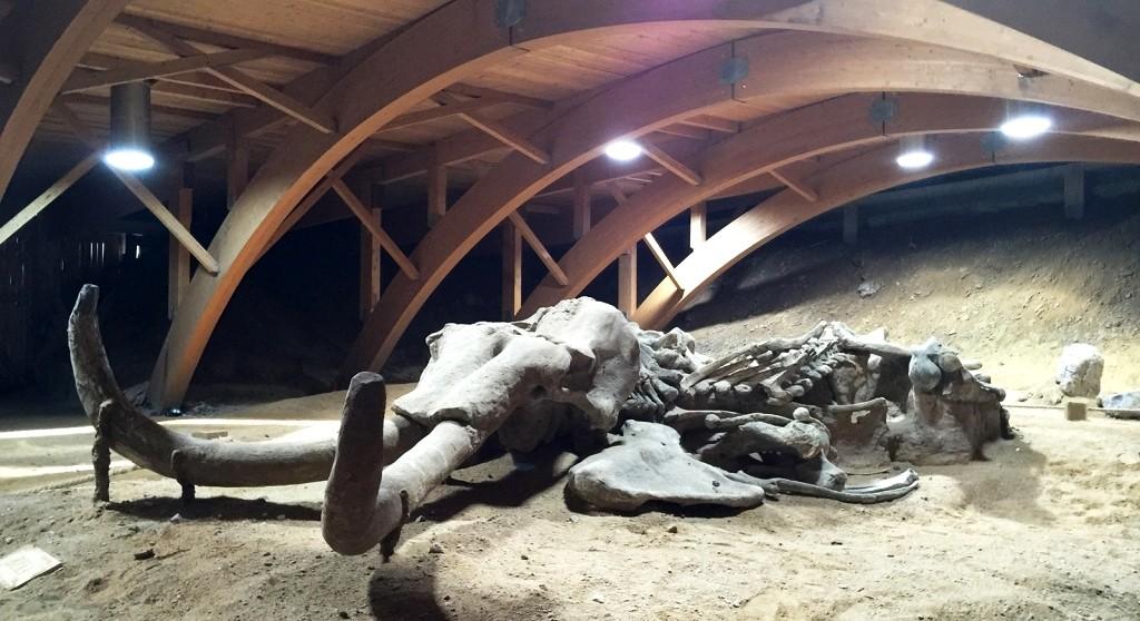 Solatube® в подземном Парке Мамонтов «Виминациум»